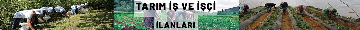 Tarım İş ve İşçi İlanları